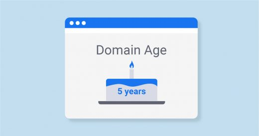 Explore What Domain Age Is and Why It Is Important for SEO