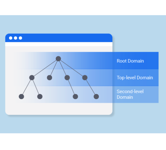 <strong>Domain name definition and structure</strong>