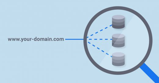 What Are DNS Records and When You Need DNS Lookup