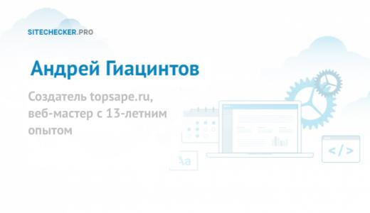 Андрей Гиацинтов: интервью о TopSape и SEO на Западе
